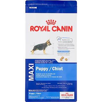 Maxy_Puppy_Royal_Canin