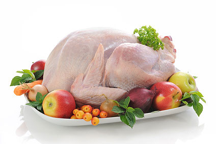 dieta-barf-pollo