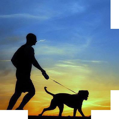 Running_perro