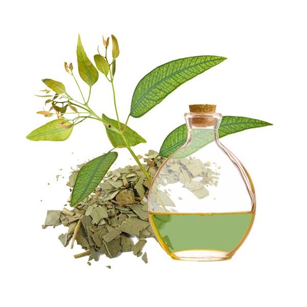 aceite-de-eucaliptus