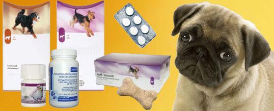 pastillas-desparasitar
