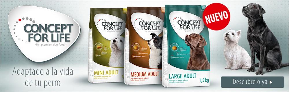 concept-for-life-nuevo_sitandplas
