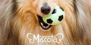 Miscota_logo
